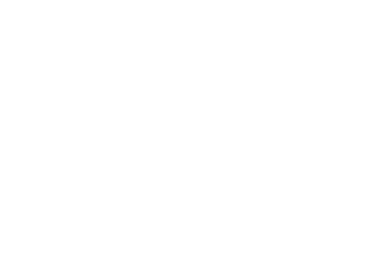 Race map of Circuit of the Americas